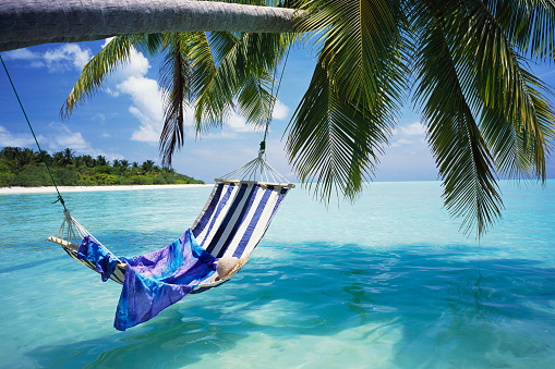 Maldives「Hammock over Tropical Ocean」:スマホ壁紙(8)