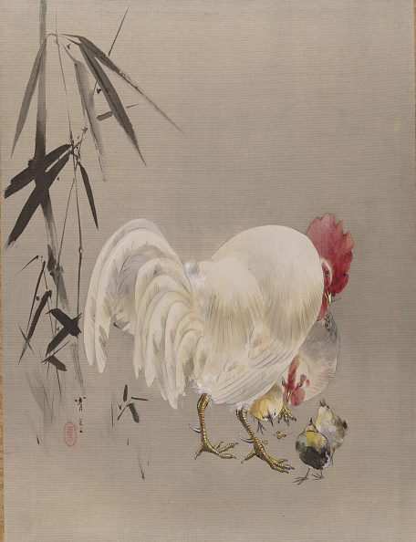 Hen「Rooster And Hen With Chicks」:写真・画像(19)[壁紙.com]