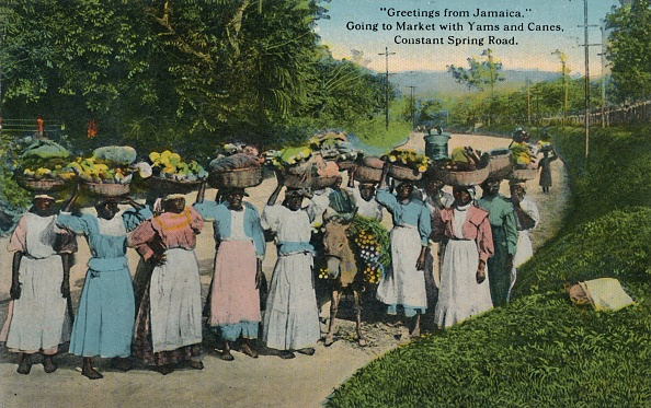Grass Family「Greetings From Jamaica Going To Market With Yams And Canes Constant Spring Road」:写真・画像(13)[壁紙.com]