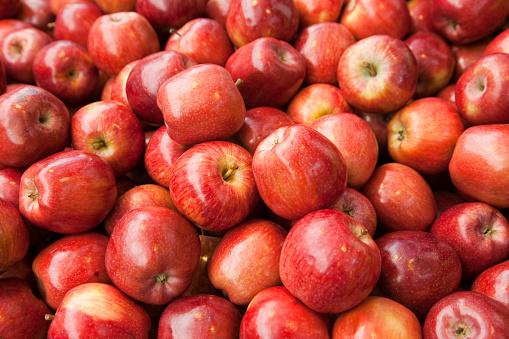 リンゴ「新鮮な赤いリンゴのマーケットから」:スマホ壁紙(18)
