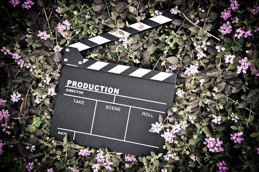 Director「clapper board isolated on lawn」:スマホ壁紙(11)