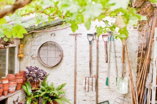 Gardening「Tools hanging on wall of garden shed」:スマホ壁紙(19)