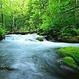 自然風景 スマホ壁紙・報道写真画像カテゴリー