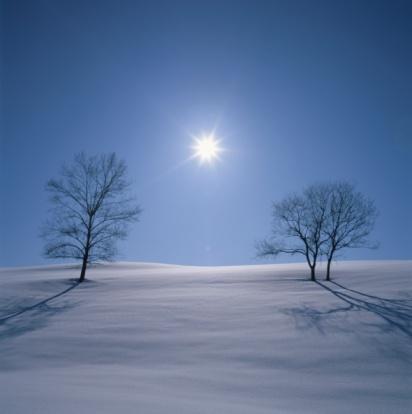Japan「Two Bare Trees in a Snowy Field With the Sun Shining Above. Biei, Hokkaido, Japan」:スマホ壁紙(3)
