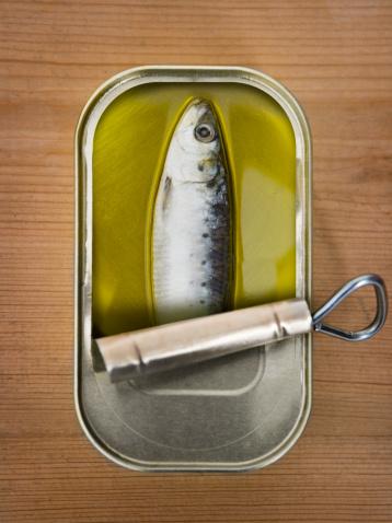 ガラス「One sardine in a tin」:スマホ壁紙(3)