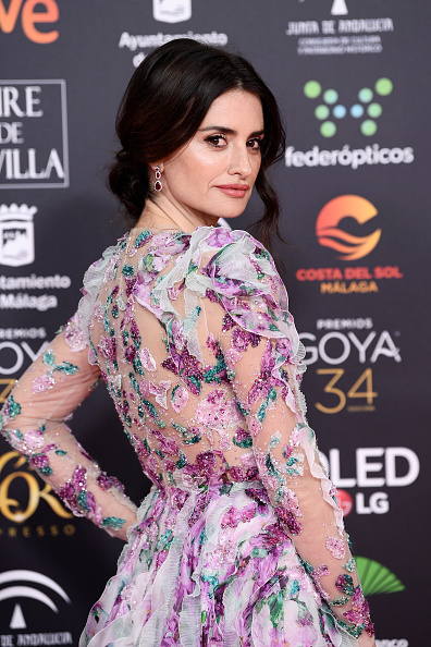 Goya Awards「Goya Cinema Awards 2020 - Red Carpet」:写真・画像(10)[壁紙.com]