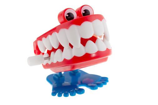 笑顔「チャターの歯」:スマホ壁紙(18)
