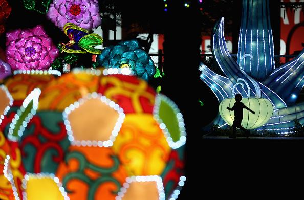 Francois Nel「Dubai Garden Glow」:写真・画像(13)[壁紙.com]