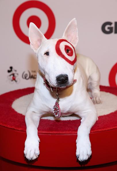 Sports Target「10th Annual GLSEN Respect Awards - Los Angeles - Red Carpet」:写真・画像(11)[壁紙.com]