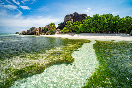Lagoon「in lagoon of tropical island paradise」:スマホ壁紙(0)
