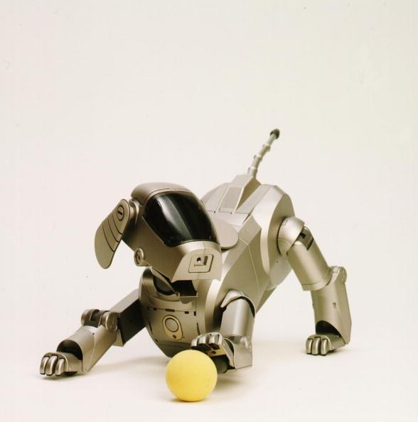 犬「Sony Corporation Announces The Launch Of The Dog Shaped Autonomous Robot Called Aibo That Can Expr」:写真・画像(12)[壁紙.com]