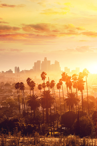 California「Los Angeles golden hour cityscape over downtown skyscrapers」:スマホ壁紙(19)