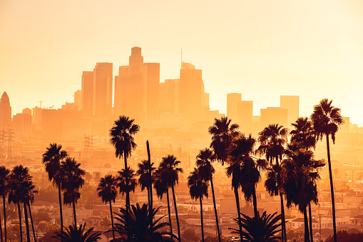 City Of Los Angeles「Los Angeles golden hour cityscape over downtown skyscrapers」:スマホ壁紙(12)