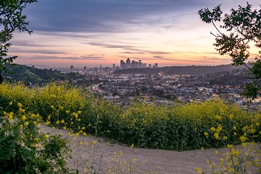 City Of Los Angeles「Los Angeles Sunset Hikes」:スマホ壁紙(2)