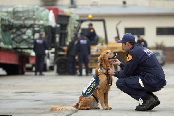 Global「Search And Rescue Team Prepares To Deploy For Haiti Earthquake Aftermath」:写真・画像(5)[壁紙.com]