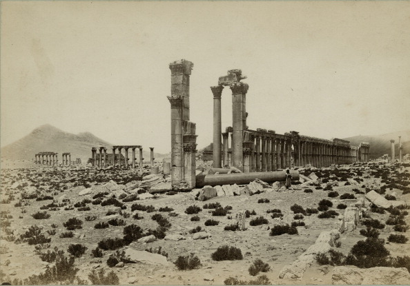 Middle East「Palmyra」:写真・画像(14)[壁紙.com]