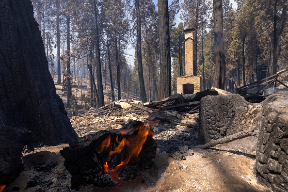 Sequoia National Forest「French Fire In California Burns Almost 15,000 Acres」:写真・画像(10)[壁紙.com]