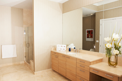 Pompano Beach「Mirror, sink and shower in modern bathroom」:スマホ壁紙(15)
