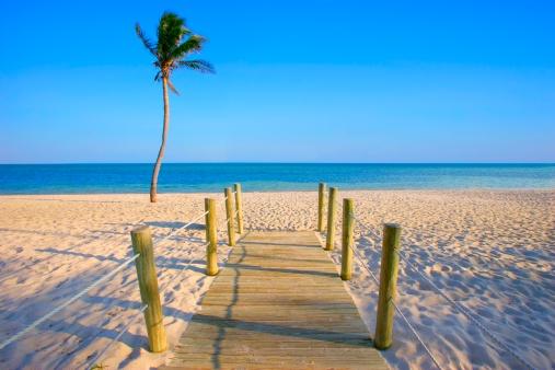 Miami「Walkway onto beach」:スマホ壁紙(14)