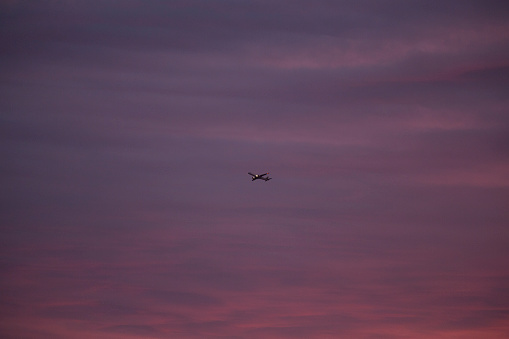 Sunset「An aeroplane takes off into deep red clouds at sunset」:スマホ壁紙(10)