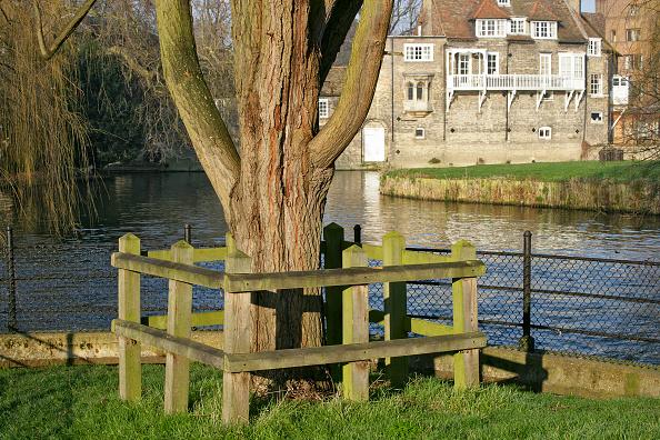 Grass「Mill Pond, Cambridge, UK」:写真・画像(15)[壁紙.com]