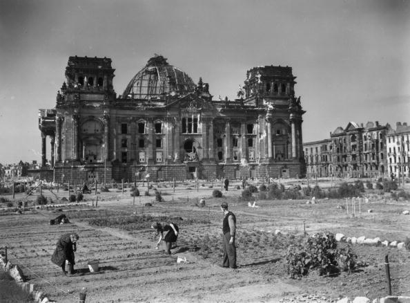 Vegetable Garden「Berlin Reichstag」:写真・画像(1)[壁紙.com]