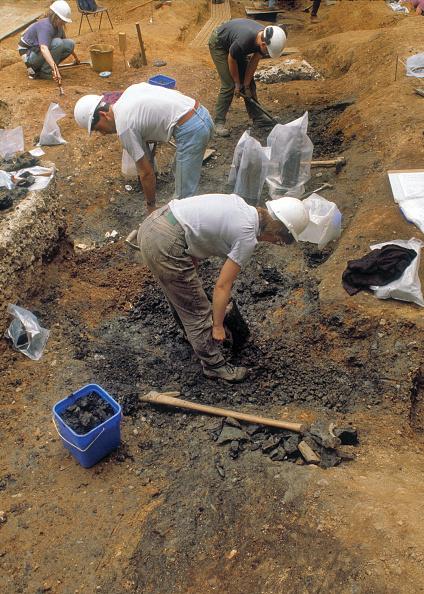 Digging「Roman Amphitheatre Excavation」:写真・画像(16)[壁紙.com]