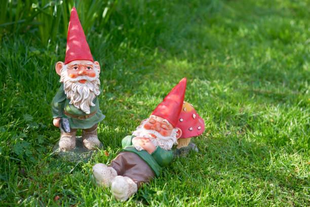 Two Garden Gnomes:スマホ壁紙(壁紙.com)