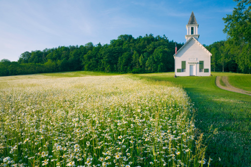 Chapel「field of daisy wildflowers and old country church」:スマホ壁紙(13)