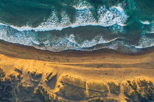Wave「ビーチの詳細」:スマホ壁紙(7)