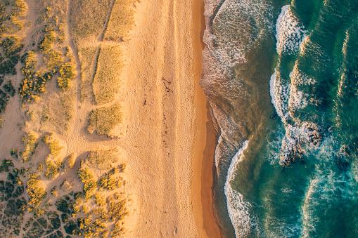 波「ビーチの詳細」:スマホ壁紙(16)