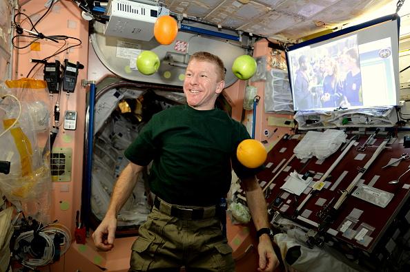 宇宙飛行士「Expedition 46 On International Space Station」:写真・画像(12)[壁紙.com]