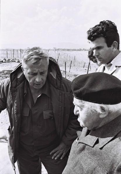 Beret「Ariel Sharon Retrospective」:写真・画像(4)[壁紙.com]