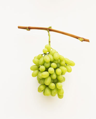 Grape「Thompson seedless grapes」:スマホ壁紙(6)