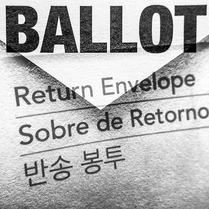 Voting Ballot「Mail in ballot」:スマホ壁紙(10)