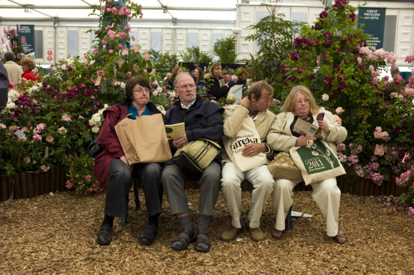 Bench「Chelsea Flower Show」:写真・画像(18)[壁紙.com]