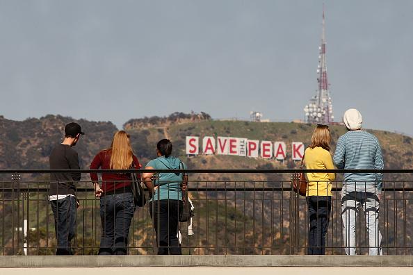 Hollywoodland「Famed Hollywood Sign Covered In Protest Of Possible Peak Development」:写真・画像(5)[壁紙.com]