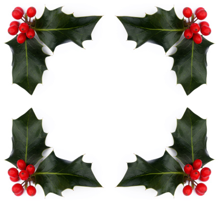Holly「Red holly berries and leaves with copy space.」:スマホ壁紙(1)