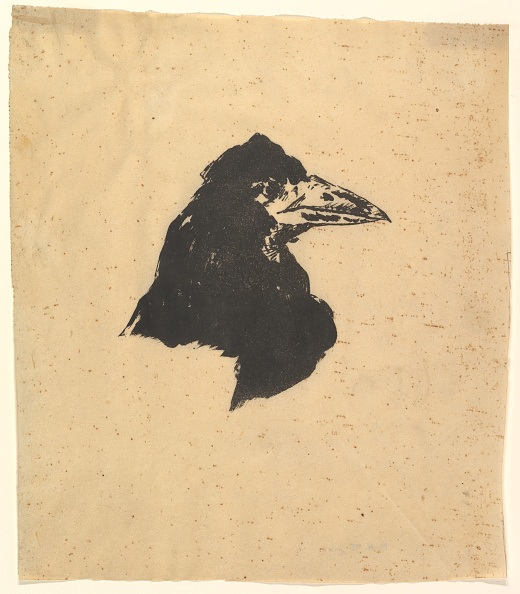 Beak「Design For The Poster And Cover For The Raven By Edgar Allan Poe」:写真・画像(8)[壁紙.com]