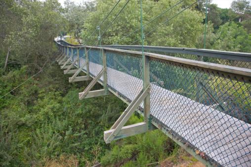 1870-1879「Swaying wood suspension bridge」:スマホ壁紙(10)