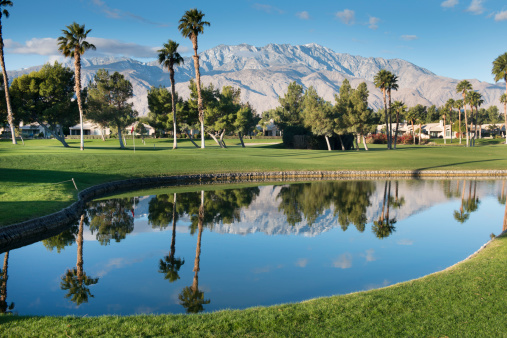 Sand Trap「Palm Springs Golf Course」:スマホ壁紙(11)