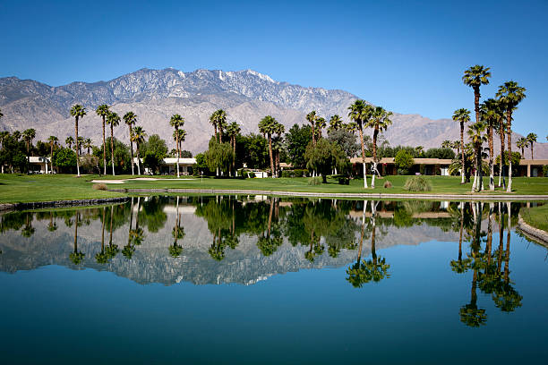 Palm Springs Golf Course:スマホ壁紙(壁紙.com)