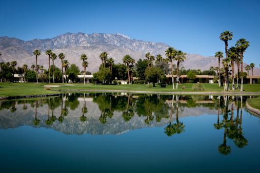 Water Hazard「Palm Springs Golf Course」:スマホ壁紙(15)