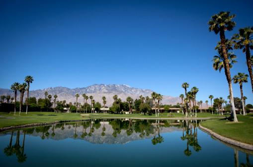 Water Hazard「Palm Springs Golf Course」:スマホ壁紙(9)