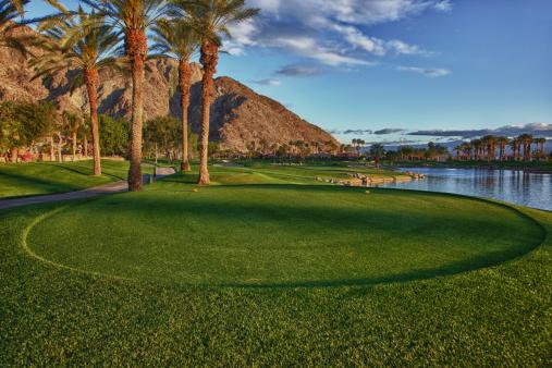 Green - Golf Course「Palm Springs Golf Course」:スマホ壁紙(3)