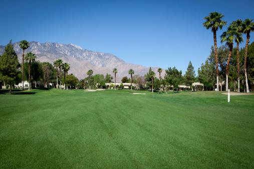 Green - Golf Course「Palm Spring Golf Course Fairway」:スマホ壁紙(18)
