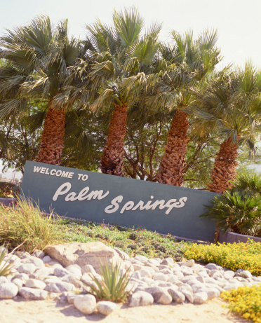 Grove「Palm Springs sign」:スマホ壁紙(13)