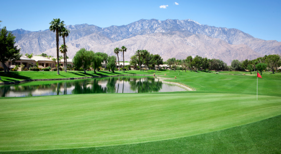 Green - Golf Course「Palm Springs Golf Course Putting Green」:スマホ壁紙(17)