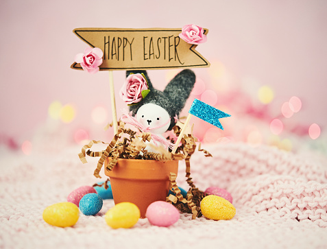 Easter Bunny「Handmade Easter bunny in ceramic plant pot with Happy Easter message」:スマホ壁紙(5)
