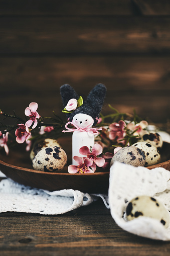 Baby Rabbit「Handmade Easter bunny with blossoms and quail eggs」:スマホ壁紙(12)